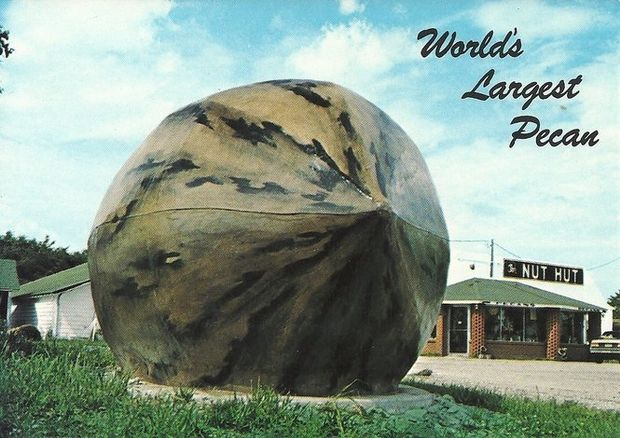World's Largest Pecan next to the James Nut Hut | Brunswick, MO